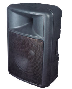 Moulded Enclosure Speaker PEVPR010